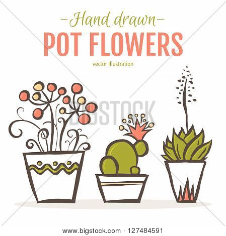 Set of hand drawn houseplants in pots