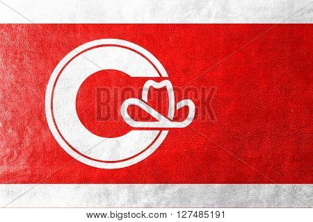 Flag Of Calgary, Painted On Leather Texture