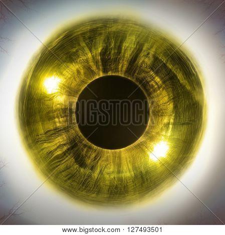 Macro extreme close up human eyeball background 3D Illustration