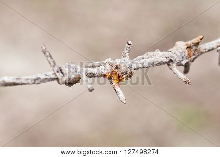Close-up view of rusty grunge barbed wire, bokeh background