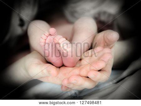 feet of newborn baby in mother hands