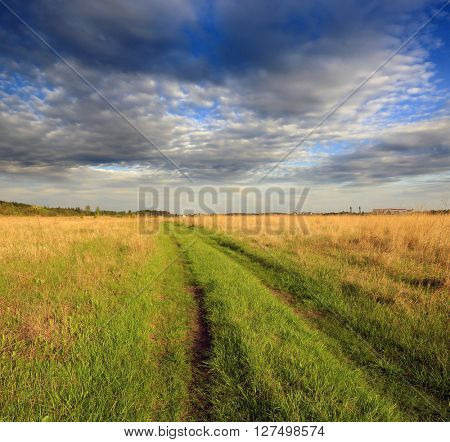Countryside dirt road in steppe under nice cloudy sky