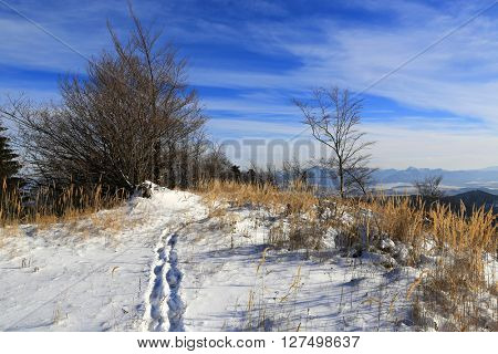 Winter landscape with path across meadow in mountains