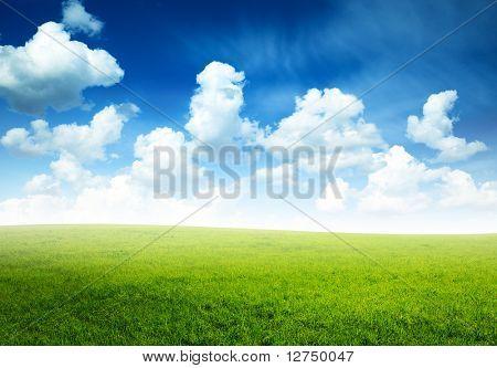 campo de manhã e verde Primavera