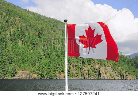 Canada flag on the Vancouver island nature background.