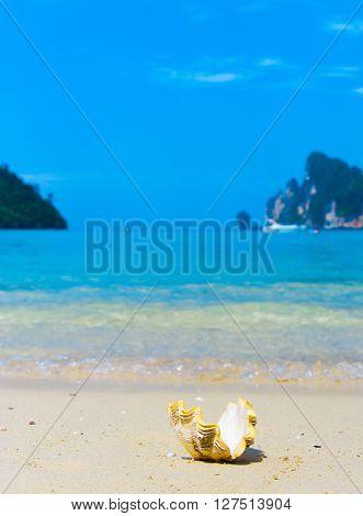 Idyllic Image Exotic Shore