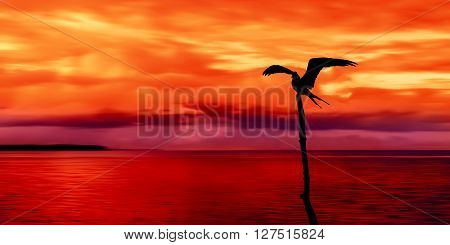 Panoramic view of sea and sky and a seabird silhouette Trinidad and Tobago at dusk