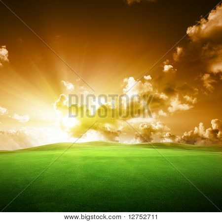 field of grass and perfect sunset sky