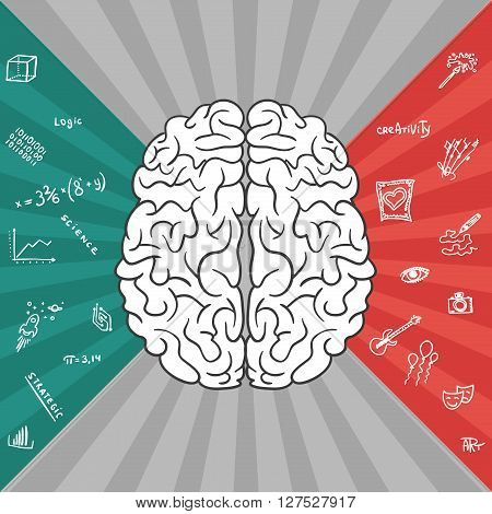 Left and right parts of brain - vector illustration of different thinking.