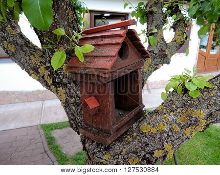 A bird feeder made in the form of a wooden house on the tree