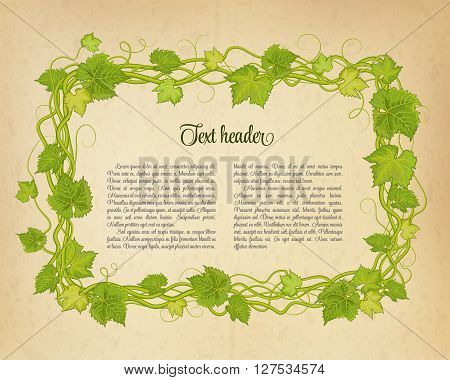 Brown wrinkled paper with branch of grapes. Vector illustration.
