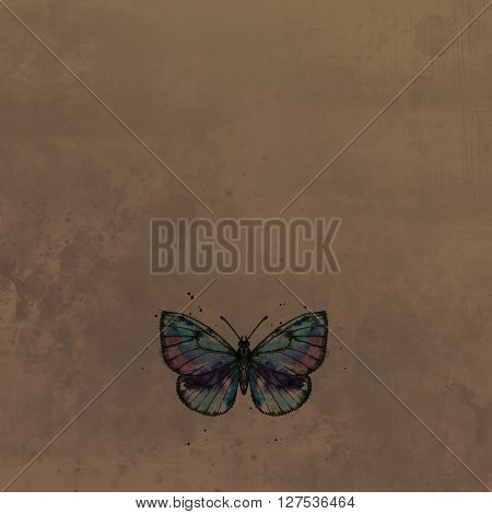 Butterfly drawing by ink and watercolor with paint stains at vintage background, scrapbook background, , hand drawn illustration
