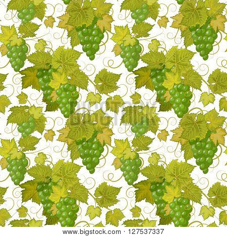 Seamless background with green grapes. Vector illustration