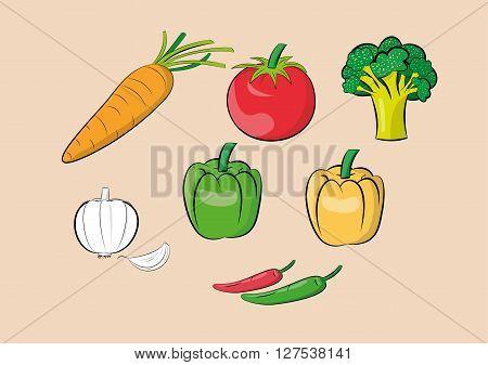 illustration of vegetable ingredients set.vector eps 10
