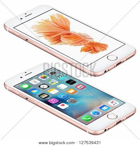 Varna Bulgaria - October 25 2015: Rose Gold Apple iPhone 6S lies on the surface with iOS 9 mobile operating system and Siamese Fighting Fish Dynamic Wallpaper on the screen. Isolated on white.