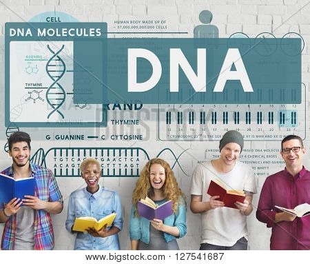 Biology Education DNA Concept