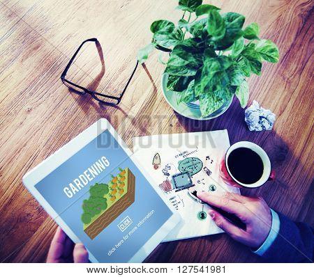 Gardening Garden Farm Plant Planting Concept