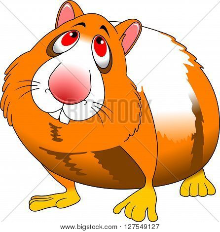 cheerful red hamster on a white background vector and illustration
