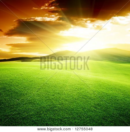 green field and sunset