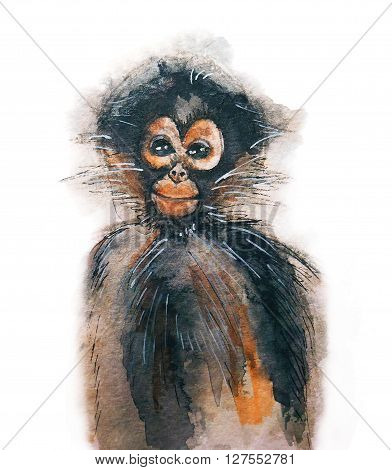 watercolor hand drawn illustration of the cute monkey