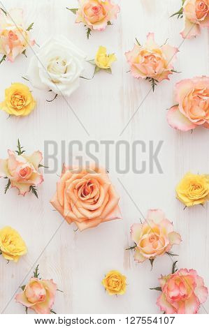Assorted fresh roses heads. Different natural soft color roses as a background. Top view, vintage toned image, blank space