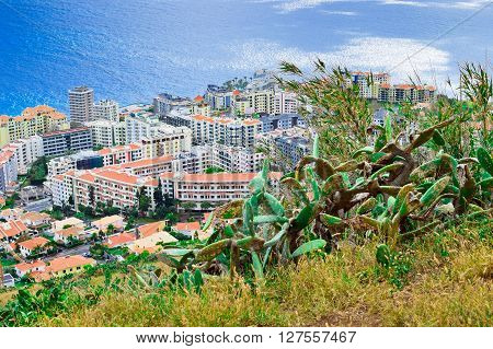 Funchal from lookout on Pico da Cruz Madeira