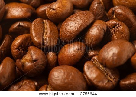 Close up of the aromatic coffe beans