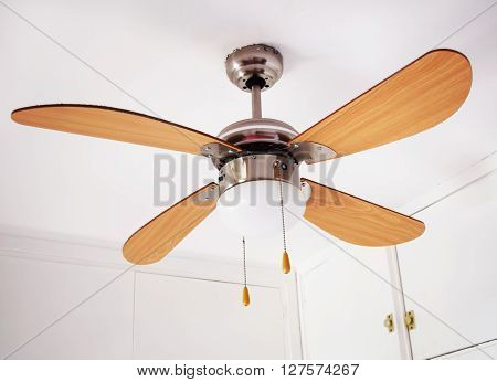 Electric ceiling brown lamp with mounted propeller ** Note: Visible grain at 100%, best at smaller sizes