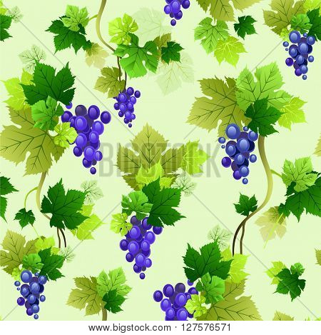 Vine pattern seamless.The natural design banner,ticket, leaflet and so on. Isolated elements.