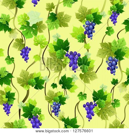 Ripe blue grapes pattern. The natural design for banner, ticket, leaflet and so on.