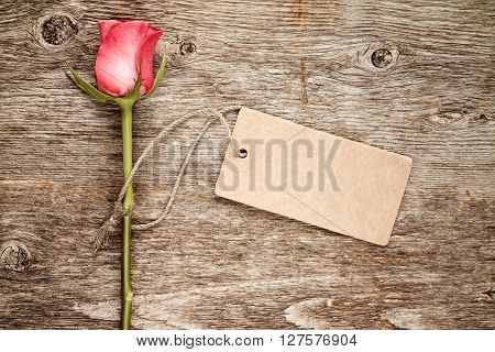 Single pink rose with blank tag tied with string