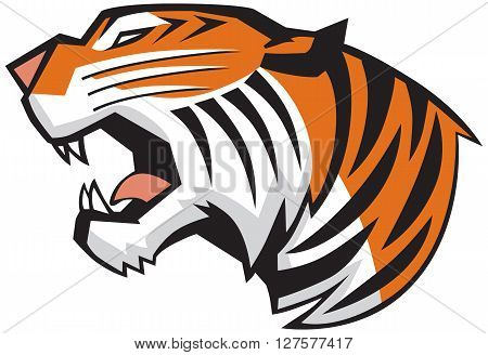 Vector Cartoon Clip Art Illiusration of a roaring tiger head in a side view rendered in a graphic style