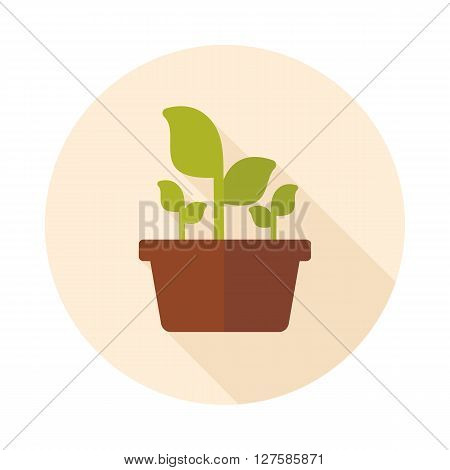 Plant in pot flat icon outline isolated garden flowerpot. Vector Illustration eps 10