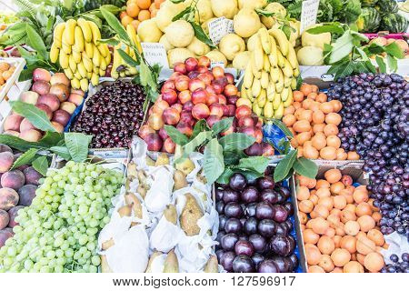 Large assortment of fruits in the market stall.