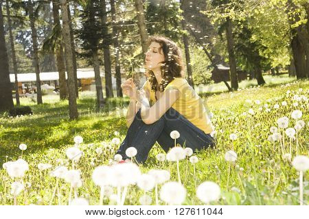 Young European woman with brown hair sit on meadow with white dandelions and blows on flower.
