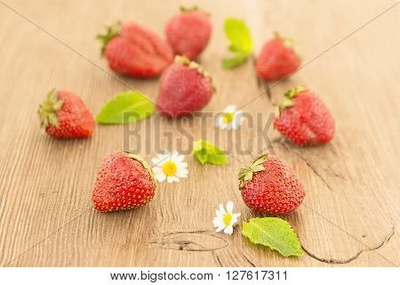 Ripe red strawberries and small daisy flowers on a wooden background. Strawberries over wooden table background with copy space. ** Note: Shallow depth of field