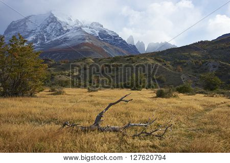 Landscape of  Torres del Paine National Park in the Magallanes region of southern Chile.