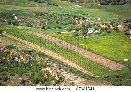 Andalusia landscape countryside road and rock in Ronda Spain