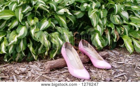 Shoes In A Garden