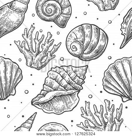 Seamless pattern sea shell. Vector engraving vintage illustrations. Isolated on white background.