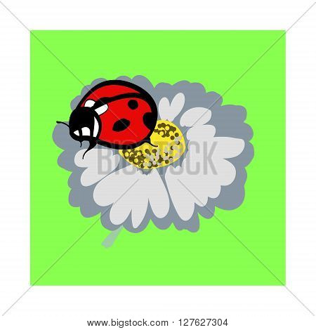 A simple image of a red beetle with black spots on the wings. Ladybug on a flower the daisy. Vector illustration on a green background.