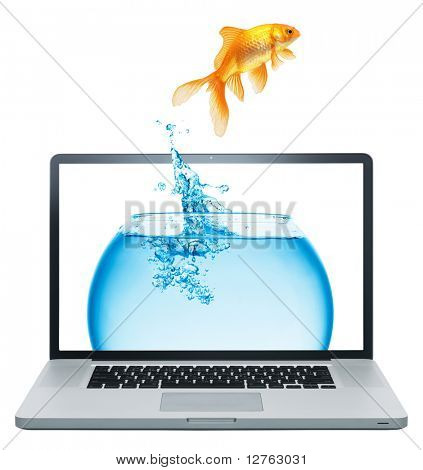 Laptop and  gold fish isolated on white background