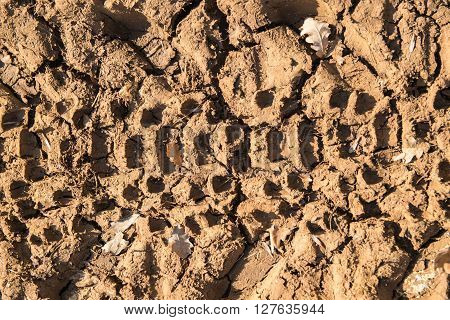 Background formed by imprint in the mud left by the wheel of a tractor.