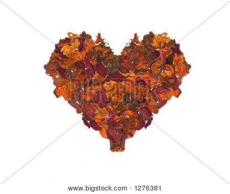 Lobes Heart