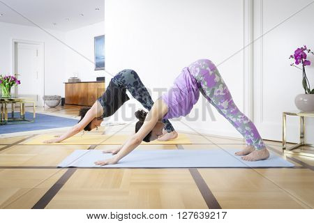 Two women doing yoga at home dog pose