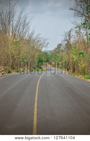 A country road with trees on either side