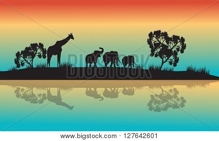 Silhouettes of african animals in morning with rainbow sky