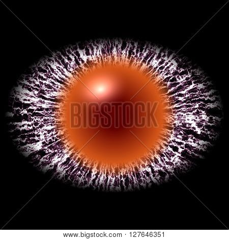 Isolated Elliptic Strange Eye With Large Pupil And Bright Retina In Background. Slim Iris Around Pup