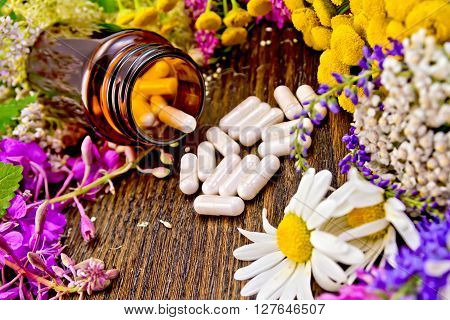 Capsules in a brown jar and on the table fresh flowers of fireweed tansy chamomile clover yarrow meadowsweet mint leaves on a background of wooden board