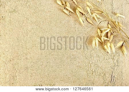 The texture oat flour with stem oat